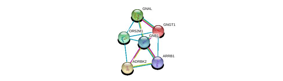 http://string-db.org/version_10/api/image/networkList?limit=0&targetmode=proteins&caller_identity=gene_cards&network_flavor=evidence&identifiers=9606.ENSP00000353343%0d%0a9606.ENSP00000367869%0d%0a9606.ENSP00000248572%0d%0a9606.ENSP00000334051%0d%0a9606.ENSP00000409581%0d%0a9606.ENSP00000317578%0d%0a