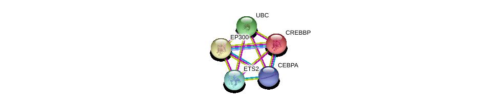 http://string-db.org/version_10/api/image/networkList?limit=0&targetmode=proteins&caller_identity=gene_cards&network_flavor=evidence&identifiers=9606.ENSP00000353344%0d%0a9606.ENSP00000263253%0d%0a9606.ENSP00000263253%0d%0a9606.ENSP00000262367%0d%0a9606.ENSP00000344818%0d%0a9606.ENSP00000427514%0d%0a