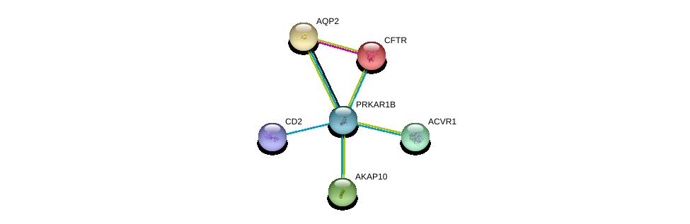 http://string-db.org/version_10/api/image/networkList?limit=0&targetmode=proteins&caller_identity=gene_cards&network_flavor=evidence&identifiers=9606.ENSP00000353415%0d%0a9606.ENSP00000358490%0d%0a9606.ENSP00000199280%0d%0a9606.ENSP00000003084%0d%0a9606.ENSP00000263640%0d%0a9606.ENSP00000225737%0d%0a
