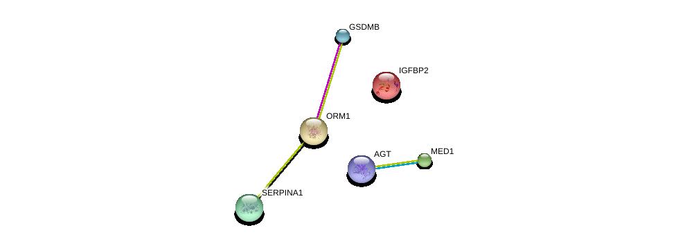 http://string-db.org/version_10/api/image/networkList?limit=0&targetmode=proteins&caller_identity=gene_cards&network_flavor=evidence&identifiers=9606.ENSP00000353465%0d%0a9606.ENSP00000300651%0d%0a9606.ENSP00000259396%0d%0a9606.ENSP00000233809%0d%0a9606.ENSP00000348068%0d%0a9606.ENSP00000355627%0d%0a