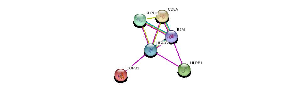 http://string-db.org/version_10/api/image/networkList?limit=0&targetmode=proteins&caller_identity=gene_cards&network_flavor=evidence&identifiers=9606.ENSP00000353472%0d%0a9606.ENSP00000452780%0d%0a9606.ENSP00000283635%0d%0a9606.ENSP00000315997%0d%0a9606.ENSP00000249923%0d%0a9606.ENSP00000338130%0d%0a