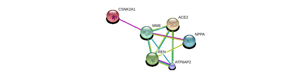 http://string-db.org/version_10/api/image/networkList?limit=0&targetmode=proteins&caller_identity=gene_cards&network_flavor=evidence&identifiers=9606.ENSP00000353679%0d%0a9606.ENSP00000252519%0d%0a9606.ENSP00000272190%0d%0a9606.ENSP00000367697%0d%0a9606.ENSP00000365663%0d%0a9606.ENSP00000217244%0d%0a