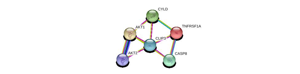 http://string-db.org/version_10/api/image/networkList?limit=0&targetmode=proteins&caller_identity=gene_cards&network_flavor=evidence&identifiers=9606.ENSP00000353732%0d%0a9606.ENSP00000375892%0d%0a9606.ENSP00000270202%0d%0a9606.ENSP00000308928%0d%0a9606.ENSP00000351273%0d%0a9606.ENSP00000162749%0d%0a