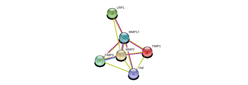 http://string-db.org/version_10/api/image/networkList?limit=0&targetmode=proteins&caller_identity=gene_cards&network_flavor=evidence&identifiers=9606.ENSP00000353767%0d%0a9606.ENSP00000398698%0d%0a9606.ENSP00000219070%0d%0a9606.ENSP00000243077%0d%0a9606.ENSP00000266085%0d%0a9606.ENSP00000218388%0d%0a