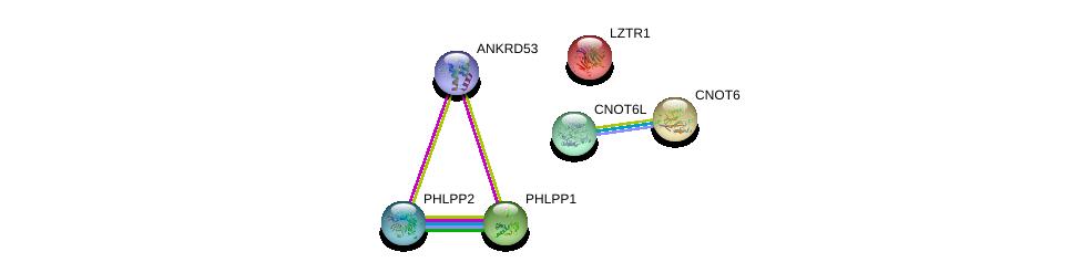 http://string-db.org/version_10/api/image/networkList?limit=0&targetmode=proteins&caller_identity=gene_cards&network_flavor=evidence&identifiers=9606.ENSP00000353796%0d%0a9606.ENSP00000215739%0d%0a9606.ENSP00000262719%0d%0a9606.ENSP00000348611%0d%0a9606.ENSP00000261951%0d%0a9606.ENSP00000264903%0d%0a