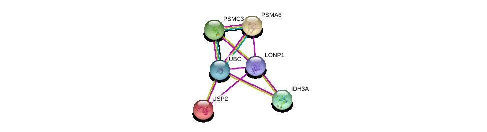 http://string-db.org/version_10/api/image/networkList?limit=0&targetmode=proteins&caller_identity=gene_cards&network_flavor=evidence&identifiers=9606.ENSP00000353826%0d%0a9606.ENSP00000260187%0d%0a9606.ENSP00000344818%0d%0a9606.ENSP00000298852%0d%0a9606.ENSP00000299518%0d%0a9606.ENSP00000261479%0d%0a