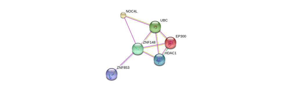 http://string-db.org/version_10/api/image/networkList?limit=0&targetmode=proteins&caller_identity=gene_cards&network_flavor=evidence&identifiers=9606.ENSP00000353863%0d%0a9606.ENSP00000263253%0d%0a9606.ENSP00000344818%0d%0a9606.ENSP00000455585%0d%0a9606.ENSP00000328854%0d%0a9606.ENSP00000362649%0d%0a
