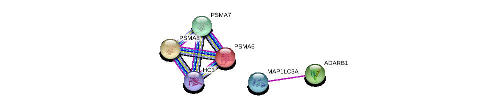 http://string-db.org/version_10/api/image/networkList?limit=0&targetmode=proteins&caller_identity=gene_cards&network_flavor=evidence&identifiers=9606.ENSP00000353920%0d%0a9606.ENSP00000363970%0d%0a9606.ENSP00000261479%0d%0a9606.ENSP00000311121%0d%0a9606.ENSP00000359910%0d%0a9606.ENSP00000455744%0d%0a