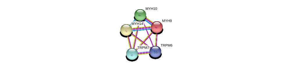 http://string-db.org/version_10/api/image/networkList?limit=0&targetmode=proteins&caller_identity=gene_cards&network_flavor=evidence&identifiers=9606.ENSP00000354006%0d%0a9606.ENSP00000320239%0d%0a9606.ENSP00000216181%0d%0a9606.ENSP00000269243%0d%0a9606.ENSP00000262269%0d%0a