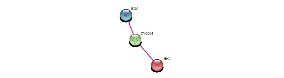 http://string-db.org/version_10/api/image/networkList?limit=0&targetmode=proteins&caller_identity=gene_cards&network_flavor=evidence&identifiers=9606.ENSP00000354028%0d%0a9606.ENSP00000344818%0d%0a9606.ENSP00000363680%0d%0a