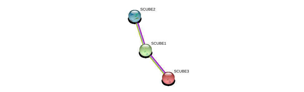 http://string-db.org/version_10/api/image/networkList?limit=0&targetmode=proteins&caller_identity=gene_cards&network_flavor=evidence&identifiers=9606.ENSP00000354080%0d%0a9606.ENSP00000274938%0d%0a9606.ENSP00000429969%0d%0a