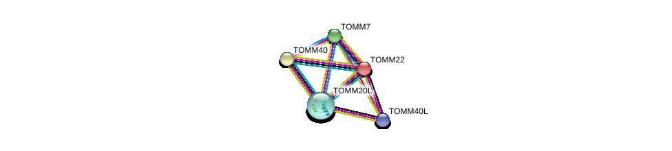 http://string-db.org/version_10/api/image/networkList?limit=0&targetmode=proteins&caller_identity=gene_cards&network_flavor=evidence&identifiers=9606.ENSP00000354204%0d%0a9606.ENSP00000216034%0d%0a9606.ENSP00000351214%0d%0a9606.ENSP00000252487%0d%0a9606.ENSP00000356966%0d%0a9606.ENSP00000356966%0d%0a