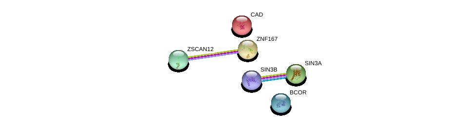 http://string-db.org/version_10/api/image/networkList?limit=0&targetmode=proteins&caller_identity=gene_cards&network_flavor=evidence&identifiers=9606.ENSP00000354305%0d%0a9606.ENSP00000273320%0d%0a9606.ENSP00000353622%0d%0a9606.ENSP00000369131%0d%0a9606.ENSP00000367705%0d%0a9606.ENSP00000264705%0d%0a