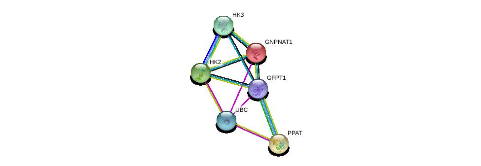 http://string-db.org/version_10/api/image/networkList?limit=0&targetmode=proteins&caller_identity=gene_cards&network_flavor=evidence&identifiers=9606.ENSP00000354347%0d%0a9606.ENSP00000344818%0d%0a9606.ENSP00000216410%0d%0a9606.ENSP00000264220%0d%0a9606.ENSP00000290573%0d%0a9606.ENSP00000292432%0d%0a