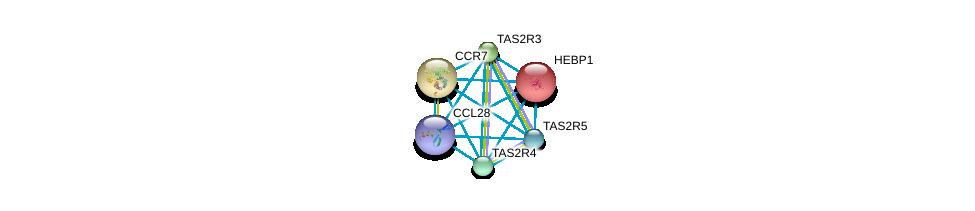 http://string-db.org/version_10/api/image/networkList?limit=0&targetmode=proteins&caller_identity=gene_cards&network_flavor=evidence&identifiers=9606.ENSP00000354416%0d%0a9606.ENSP00000014930%0d%0a9606.ENSP00000246657%0d%0a9606.ENSP00000247879%0d%0a9606.ENSP00000247881%0d%0a9606.ENSP00000247883%0d%0a