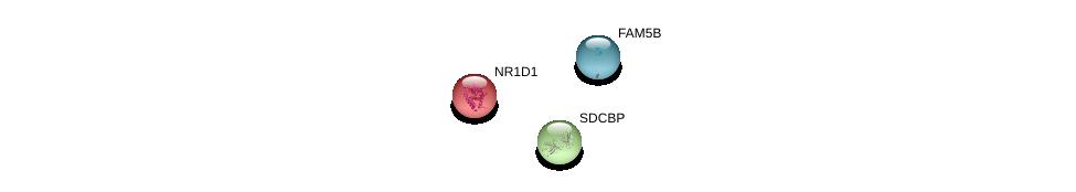 http://string-db.org/version_10/api/image/networkList?limit=0&targetmode=proteins&caller_identity=gene_cards&network_flavor=evidence&identifiers=9606.ENSP00000354481%0d%0a9606.ENSP00000260130%0d%0a9606.ENSP00000246672%0d%0a
