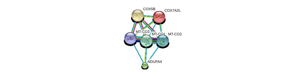 http://string-db.org/version_10/api/image/networkList?limit=0&targetmode=proteins&caller_identity=gene_cards&network_flavor=evidence&identifiers=9606.ENSP00000354499%0d%0a9606.ENSP00000354876%0d%0a9606.ENSP00000354982%0d%0a9606.ENSP00000258424%0d%0a9606.ENSP00000339720%0d%0a9606.ENSP00000234301%0d%0a