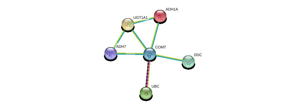 http://string-db.org/version_10/api/image/networkList?limit=0&targetmode=proteins&caller_identity=gene_cards&network_flavor=evidence&identifiers=9606.ENSP00000354511%0d%0a9606.ENSP00000344818%0d%0a9606.ENSP00000304845%0d%0a9606.ENSP00000209668%0d%0a9606.ENSP00000350616%0d%0a9606.ENSP00000420269%0d%0a