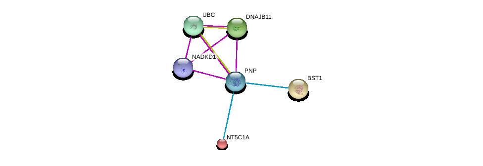 http://string-db.org/version_10/api/image/networkList?limit=0&targetmode=proteins&caller_identity=gene_cards&network_flavor=evidence&identifiers=9606.ENSP00000354532%0d%0a9606.ENSP00000371362%0d%0a9606.ENSP00000344818%0d%0a9606.ENSP00000265028%0d%0a9606.ENSP00000265016%0d%0a9606.ENSP00000235628%0d%0a