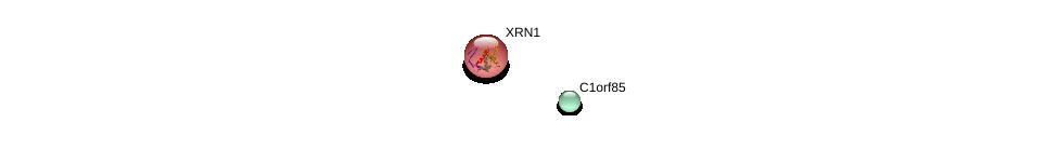 http://string-db.org/version_10/api/image/networkList?limit=0&targetmode=proteins&caller_identity=gene_cards&network_flavor=evidence&identifiers=9606.ENSP00000354553%0d%0a9606.ENSP00000264951%0d%0a