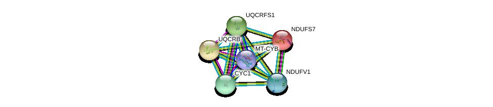 http://string-db.org/version_10/api/image/networkList?limit=0&targetmode=proteins&caller_identity=gene_cards&network_flavor=evidence&identifiers=9606.ENSP00000354554%0d%0a9606.ENSP00000287022%0d%0a9606.ENSP00000317159%0d%0a9606.ENSP00000306397%0d%0a9606.ENSP00000233627%0d%0a9606.ENSP00000322450%0d%0a