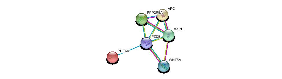 http://string-db.org/version_10/api/image/networkList?limit=0&targetmode=proteins&caller_identity=gene_cards&network_flavor=evidence&identifiers=9606.ENSP00000354607%0d%0a9606.ENSP00000264634%0d%0a9606.ENSP00000255266%0d%0a9606.ENSP00000257430%0d%0a9606.ENSP00000261461%0d%0a9606.ENSP00000262320%0d%0a