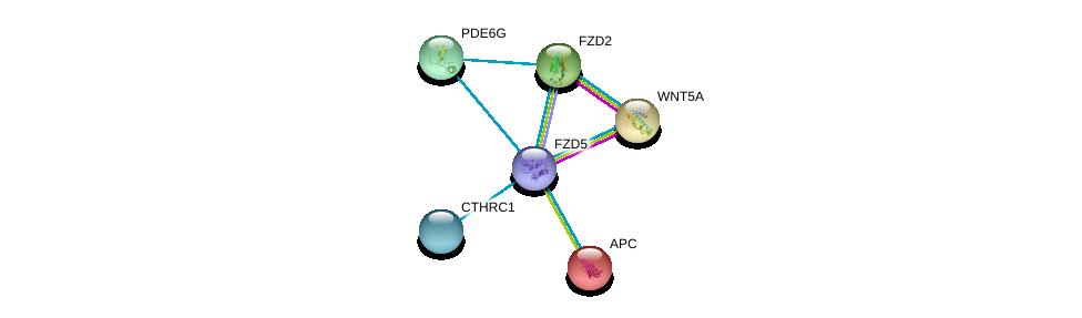 http://string-db.org/version_10/api/image/networkList?limit=0&targetmode=proteins&caller_identity=gene_cards&network_flavor=evidence&identifiers=9606.ENSP00000354607%0d%0a9606.ENSP00000264634%0d%0a9606.ENSP00000257430%0d%0a9606.ENSP00000323901%0d%0a9606.ENSP00000330523%0d%0a9606.ENSP00000328412%0d%0a