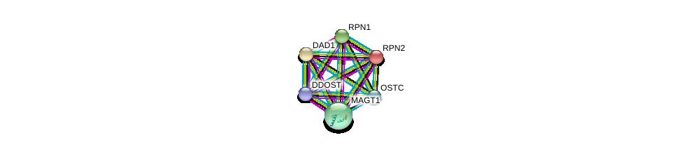 http://string-db.org/version_10/api/image/networkList?limit=0&targetmode=proteins&caller_identity=gene_cards&network_flavor=evidence&identifiers=9606.ENSP00000354649%0d%0a9606.ENSP00000237530%0d%0a9606.ENSP00000296255%0d%0a9606.ENSP00000250498%0d%0a9606.ENSP00000364188%0d%0a9606.ENSP00000354676%0d%0a