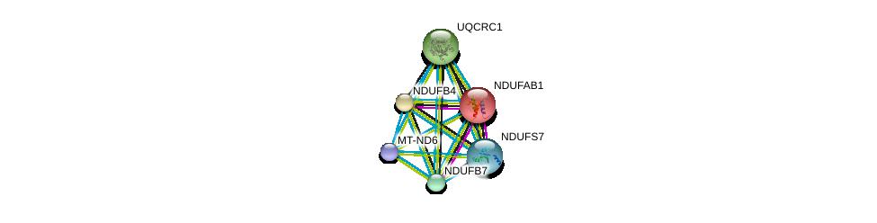 http://string-db.org/version_10/api/image/networkList?limit=0&targetmode=proteins&caller_identity=gene_cards&network_flavor=evidence&identifiers=9606.ENSP00000354665%0d%0a9606.ENSP00000007516%0d%0a9606.ENSP00000184266%0d%0a9606.ENSP00000203407%0d%0a9606.ENSP00000215565%0d%0a9606.ENSP00000233627%0d%0a