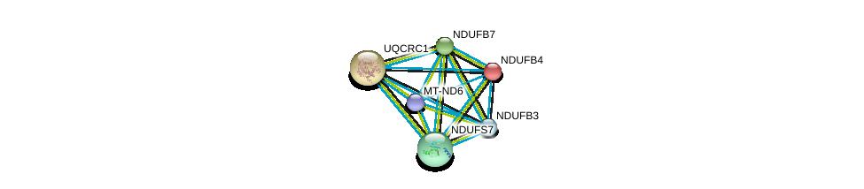 http://string-db.org/version_10/api/image/networkList?limit=0&targetmode=proteins&caller_identity=gene_cards&network_flavor=evidence&identifiers=9606.ENSP00000354665%0d%0a9606.ENSP00000184266%0d%0a9606.ENSP00000203407%0d%0a9606.ENSP00000215565%0d%0a9606.ENSP00000233627%0d%0a9606.ENSP00000237889%0d%0a
