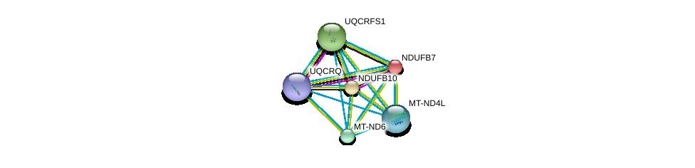 http://string-db.org/version_10/api/image/networkList?limit=0&targetmode=proteins&caller_identity=gene_cards&network_flavor=evidence&identifiers=9606.ENSP00000354665%0d%0a9606.ENSP00000367934%0d%0a9606.ENSP00000354728%0d%0a9606.ENSP00000215565%0d%0a9606.ENSP00000268668%0d%0a9606.ENSP00000306397%0d%0a