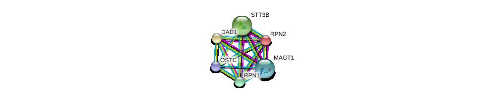 http://string-db.org/version_10/api/image/networkList?limit=0&targetmode=proteins&caller_identity=gene_cards&network_flavor=evidence&identifiers=9606.ENSP00000354676%0d%0a9606.ENSP00000296255%0d%0a9606.ENSP00000237530%0d%0a9606.ENSP00000354649%0d%0a9606.ENSP00000250498%0d%0a9606.ENSP00000295770%0d%0a