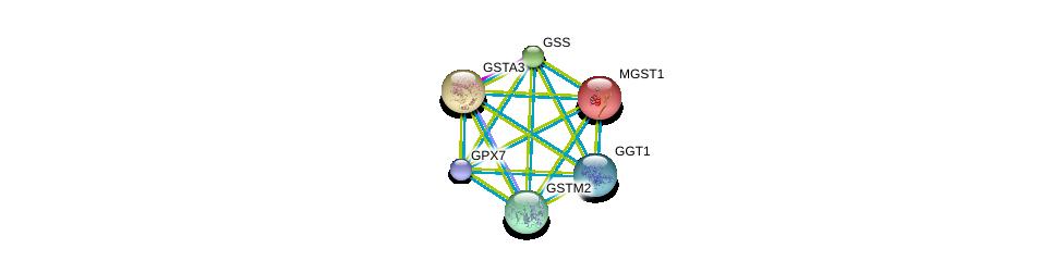 http://string-db.org/version_10/api/image/networkList?limit=0&targetmode=proteins&caller_identity=gene_cards&network_flavor=evidence&identifiers=9606.ENSP00000354677%0d%0a9606.ENSP00000010404%0d%0a9606.ENSP00000211122%0d%0a9606.ENSP00000216951%0d%0a9606.ENSP00000241337%0d%0a9606.ENSP00000248923%0d%0a