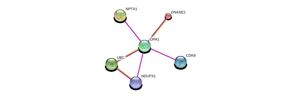 http://string-db.org/version_10/api/image/networkList?limit=0&targetmode=proteins&caller_identity=gene_cards&network_flavor=evidence&identifiers=9606.ENSP00000354681%0d%0a9606.ENSP00000307549%0d%0a9606.ENSP00000392709%0d%0a9606.ENSP00000344818%0d%0a9606.ENSP00000370938%0d%0a9606.ENSP00000222219%0d%0a