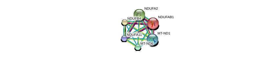 http://string-db.org/version_10/api/image/networkList?limit=0&targetmode=proteins&caller_identity=gene_cards&network_flavor=evidence&identifiers=9606.ENSP00000354687%0d%0a9606.ENSP00000252102%0d%0a9606.ENSP00000007516%0d%0a9606.ENSP00000354665%0d%0a9606.ENSP00000389160%0d%0a9606.ENSP00000184266%0d%0a