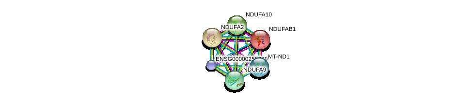 http://string-db.org/version_10/api/image/networkList?limit=0&targetmode=proteins&caller_identity=gene_cards&network_flavor=evidence&identifiers=9606.ENSP00000354687%0d%0a9606.ENSP00000252102%0d%0a9606.ENSP00000007516%0d%0a9606.ENSP00000456832%0d%0a9606.ENSP00000252711%0d%0a9606.ENSP00000266544%0d%0a
