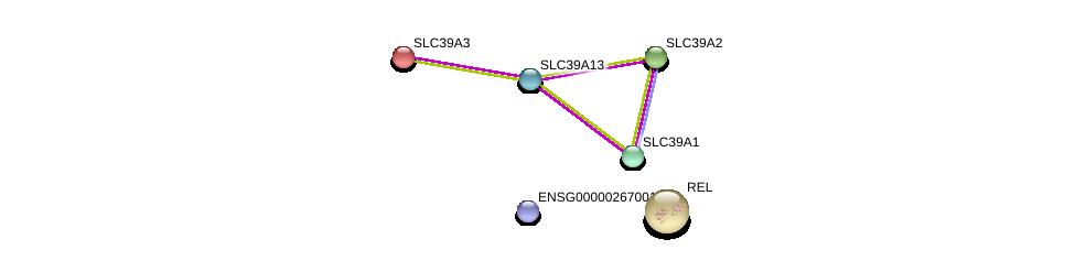 http://string-db.org/version_10/api/image/networkList?limit=0&targetmode=proteins&caller_identity=gene_cards&network_flavor=evidence&identifiers=9606.ENSP00000354689%0d%0a9606.ENSP00000269740%0d%0a9606.ENSP00000309710%0d%0a9606.ENSP00000467958%0d%0a9606.ENSP00000298681%0d%0a9606.ENSP00000295025%0d%0a
