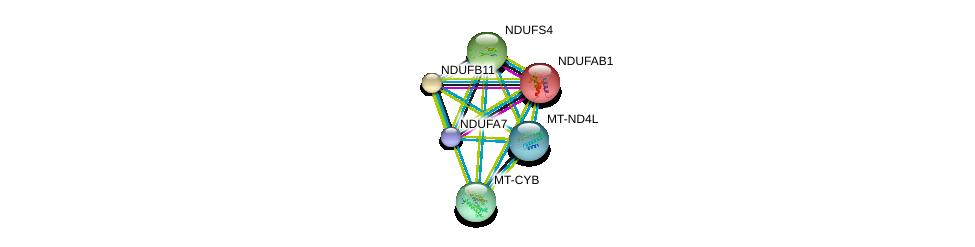 http://string-db.org/version_10/api/image/networkList?limit=0&targetmode=proteins&caller_identity=gene_cards&network_flavor=evidence&identifiers=9606.ENSP00000354728%0d%0a9606.ENSP00000296684%0d%0a9606.ENSP00000276062%0d%0a9606.ENSP00000354554%0d%0a9606.ENSP00000007516%0d%0a9606.ENSP00000470609%0d%0a