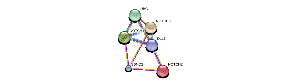 http://string-db.org/version_10/api/image/networkList?limit=0&targetmode=proteins&caller_identity=gene_cards&network_flavor=evidence&identifiers=9606.ENSP00000354733%0d%0a9606.ENSP00000355718%0d%0a9606.ENSP00000344818%0d%0a9606.ENSP00000263388%0d%0a9606.ENSP00000256646%0d%0a9606.ENSP00000277541%0d%0a