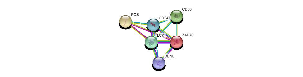 http://string-db.org/version_10/api/image/networkList?limit=0&targetmode=proteins&caller_identity=gene_cards&network_flavor=evidence&identifiers=9606.ENSP00000354782%0d%0a9606.ENSP00000264972%0d%0a9606.ENSP00000337825%0d%0a9606.ENSP00000332049%0d%0a9606.ENSP00000417653%0d%0a9606.ENSP00000306245%0d%0a