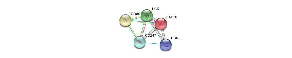 http://string-db.org/version_10/api/image/networkList?limit=0&targetmode=proteins&caller_identity=gene_cards&network_flavor=evidence&identifiers=9606.ENSP00000354782%0d%0a9606.ENSP00000264972%0d%0a9606.ENSP00000337825%0d%0a9606.ENSP00000332049%0d%0a9606.ENSP00000417653%0d%0a9606.ENSP00000417653%0d%0a