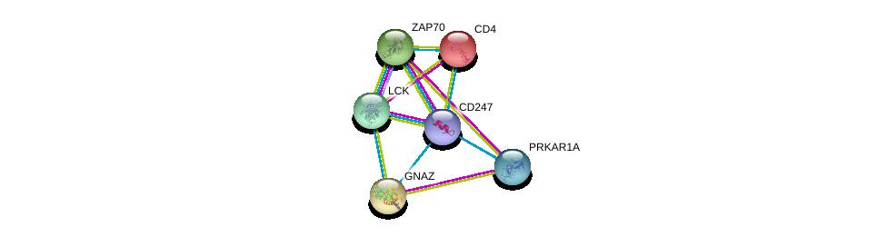 http://string-db.org/version_10/api/image/networkList?limit=0&targetmode=proteins&caller_identity=gene_cards&network_flavor=evidence&identifiers=9606.ENSP00000354782%0d%0a9606.ENSP00000264972%0d%0a9606.ENSP00000337825%0d%0a9606.ENSP00000351410%0d%0a9606.ENSP00000248996%0d%0a9606.ENSP00000011653%0d%0a