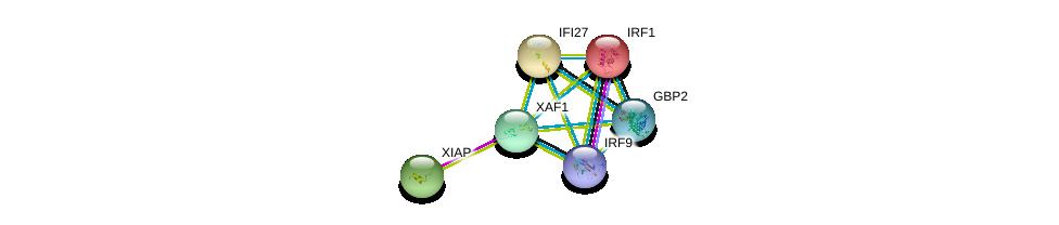 http://string-db.org/version_10/api/image/networkList?limit=0&targetmode=proteins&caller_identity=gene_cards&network_flavor=evidence&identifiers=9606.ENSP00000354822%0d%0a9606.ENSP00000347858%0d%0a9606.ENSP00000298902%0d%0a9606.ENSP00000245414%0d%0a9606.ENSP00000380073%0d%0a9606.ENSP00000359497%0d%0a