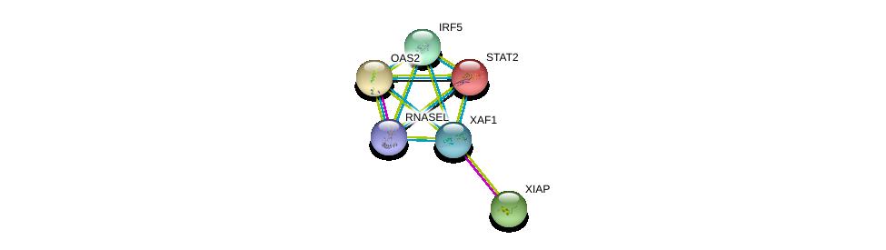 http://string-db.org/version_10/api/image/networkList?limit=0&targetmode=proteins&caller_identity=gene_cards&network_flavor=evidence&identifiers=9606.ENSP00000354822%0d%0a9606.ENSP00000347858%0d%0a9606.ENSP00000356530%0d%0a9606.ENSP00000342278%0d%0a9606.ENSP00000315768%0d%0a9606.ENSP00000349770%0d%0a