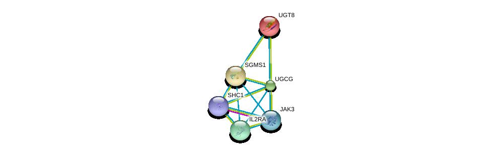 http://string-db.org/version_10/api/image/networkList?limit=0&targetmode=proteins&caller_identity=gene_cards&network_flavor=evidence&identifiers=9606.ENSP00000354829%0d%0a9606.ENSP00000369293%0d%0a9606.ENSP00000311648%0d%0a9606.ENSP00000391676%0d%0a9606.ENSP00000401303%0d%0a9606.ENSP00000363397%0d%0a