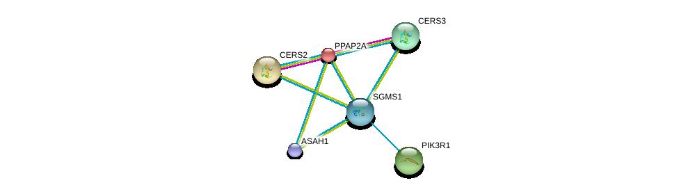 http://string-db.org/version_10/api/image/networkList?limit=0&targetmode=proteins&caller_identity=gene_cards&network_flavor=evidence&identifiers=9606.ENSP00000354829%0d%0a9606.ENSP00000371152%0d%0a9606.ENSP00000264775%0d%0a9606.ENSP00000271688%0d%0a9606.ENSP00000274335%0d%0a9606.ENSP00000284382%0d%0a