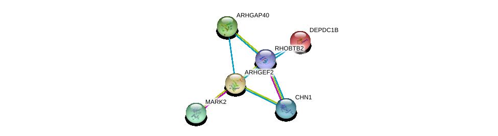 http://string-db.org/version_10/api/image/networkList?limit=0&targetmode=proteins&caller_identity=gene_cards&network_flavor=evidence&identifiers=9606.ENSP00000354837%0d%0a9606.ENSP00000385751%0d%0a9606.ENSP00000386741%0d%0a9606.ENSP00000427926%0d%0a9606.ENSP00000265036%0d%0a9606.ENSP00000362442%0d%0a