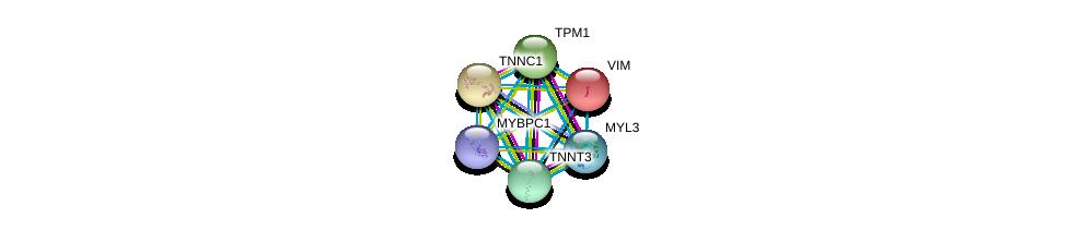 http://string-db.org/version_10/api/image/networkList?limit=0&targetmode=proteins&caller_identity=gene_cards&network_flavor=evidence&identifiers=9606.ENSP00000354849%0d%0a9606.ENSP00000224237%0d%0a9606.ENSP00000232975%0d%0a9606.ENSP00000267996%0d%0a9606.ENSP00000278317%0d%0a9606.ENSP00000292327%0d%0a