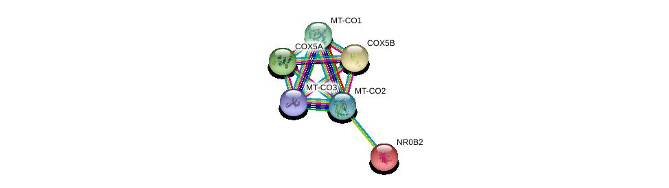 http://string-db.org/version_10/api/image/networkList?limit=0&targetmode=proteins&caller_identity=gene_cards&network_flavor=evidence&identifiers=9606.ENSP00000354876%0d%0a9606.ENSP00000258424%0d%0a9606.ENSP00000354499%0d%0a9606.ENSP00000317780%0d%0a9606.ENSP00000354982%0d%0a9606.ENSP00000254227%0d%0a