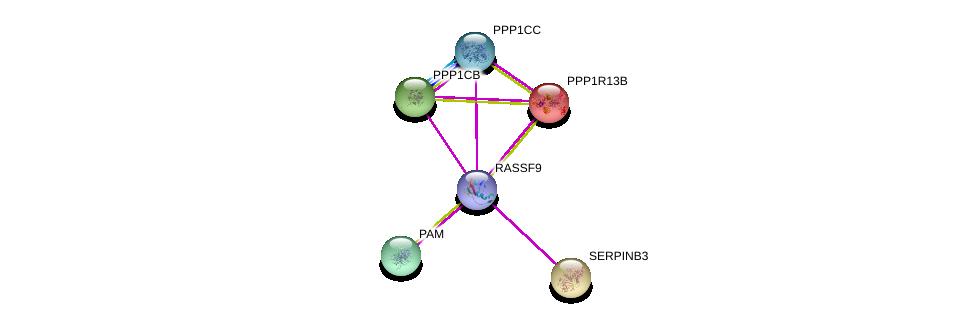 http://string-db.org/version_10/api/image/networkList?limit=0&targetmode=proteins&caller_identity=gene_cards&network_flavor=evidence&identifiers=9606.ENSP00000354884%0d%0a9606.ENSP00000306100%0d%0a9606.ENSP00000283752%0d%0a9606.ENSP00000296122%0d%0a9606.ENSP00000202556%0d%0a9606.ENSP00000335084%0d%0a